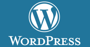 WordPress Blogunuzu Yedeklemek Neden Önemlidir?