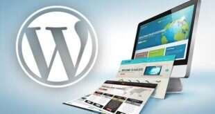 WordPress Warez Tema Kullanmak Neden Zararlıdır?