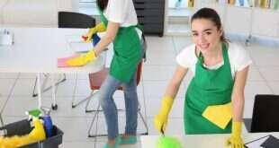 Evde Temizlik Şirketi Kurarak Para Kazanmak